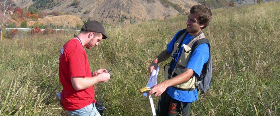 Students researching in the field